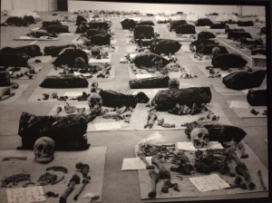 Victims' bones found in mass graves